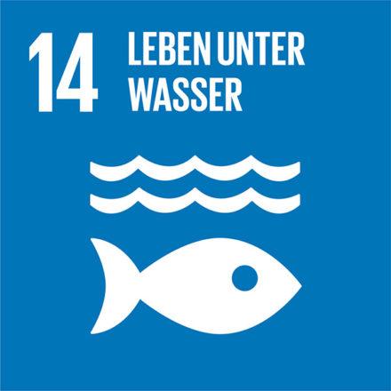 Bewahrung und nachhaltige Nutzung der Ozeane, Meere und Meeresressourcen
