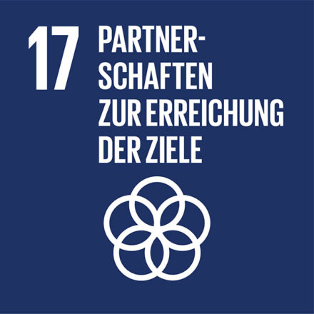 Umsetzungsmittel und globale Partnerschaft stärken